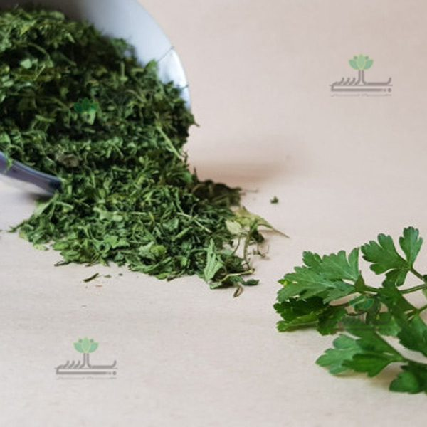 Export Dried Parsley