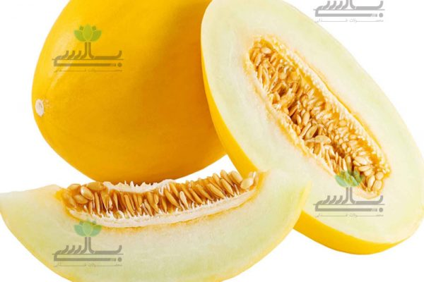 Dried persian melon