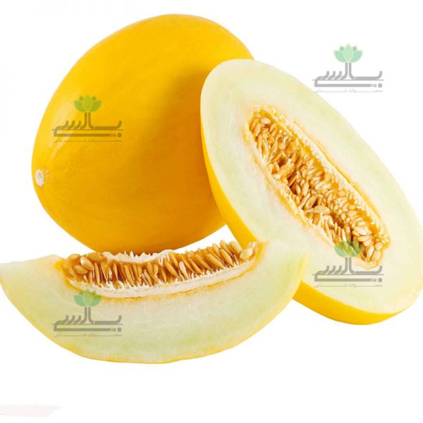 Dried persian Melon (Sliced)