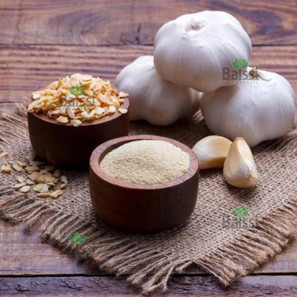 Export Garlic Powder