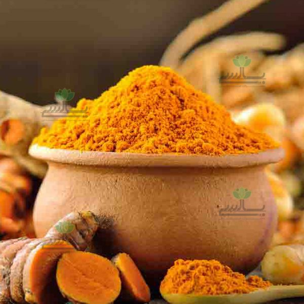 Export Turmeric Powder